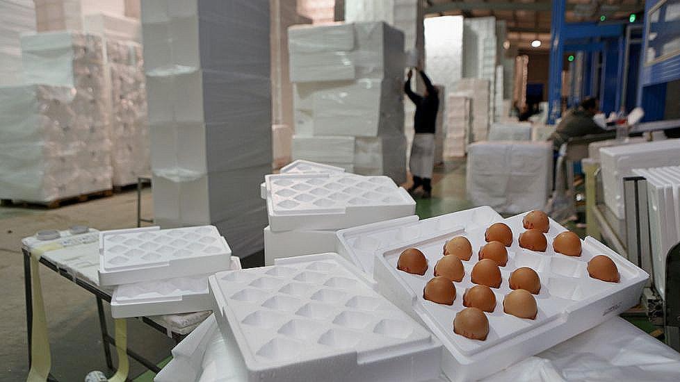 C mo llevar huevos a la otra parte del mundo con total - Empresas carballo ...